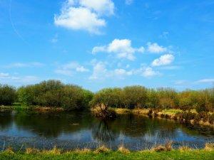 Rockys fishing lake at Yet-Y-Gors Fishguard